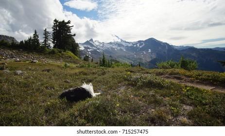 Exploring Washington State, North Cascades