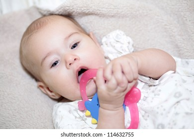 Exploring world. Little baby holding toy in mouth