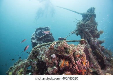 Exploring world war II shipwreck in Coron area, Palawan, Philippines.