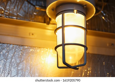Explosion-proof lamp for fighting industrial enterprises with warm lighting. In the premises of industrial production.