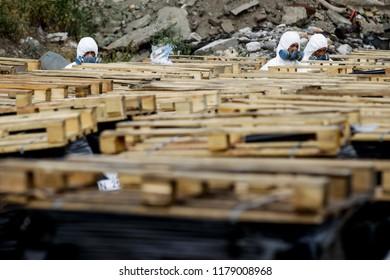 Export of poisonous chemicals for deactivation. Kyiv, Ukraine. 23-07-2013
