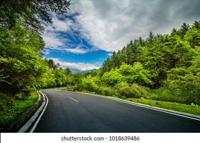 Express highway in nature