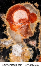Exteme macro of an Leopardskin Jasper polished surface. Jasper, an aggregate of microgranular quartz and/or chalcedony and other mineral phases, is an opaque, impure variety of silica
