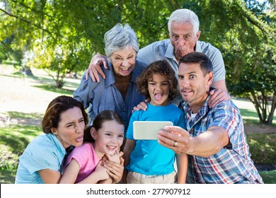 Extended family taking a selfie in the park on a sunny day