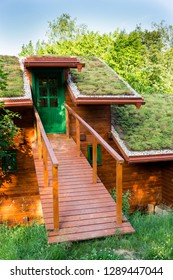 Extensive green living sod roof covered with vegetation mostly tasteless stonecrop seen, sunny summer day
