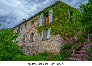 Exterior of a house in ivy. A plants for decorating wall of a Farm house. Old building with windows cover with creeper plant wall background. Picturesque countryside of France. Eco tourism.
