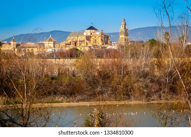 Exterior of old Mezquita Cathedral of Cordoba city above Guadalquivir river with bare trees in bright sunlight on background of mountains in Andalusia, Spain