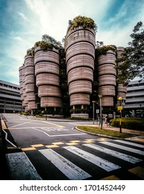 Exterior view of the Hive building also known as the Learning Hub in Nanyang Technological University Singapore in Singapore, Asia