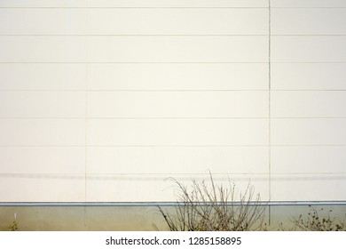 The exterior wall of building