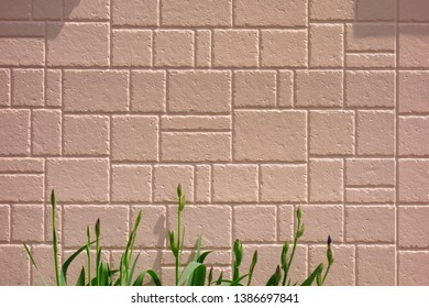 Exterior wall of housing  background