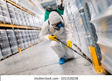 Exterminator in industrial plant spraying pesticide with sprayer.