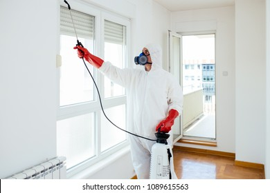 Exterminator in work wear spraying pesticide or insecticide with sprayer
