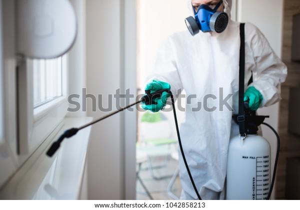 Exterminator in work wear spraying pesticide with sprayer