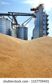 External construction, storage and drying of grain, wheat, corn, soybeans on the background of granaries
