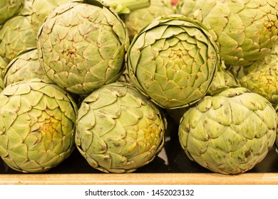 Extra large Artichokes  on display at a grocery store.