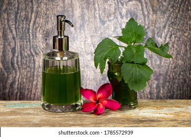 Extracts from Patchouli leaves. Used to flavor the soap. Use with shower water to help reduce body odor.