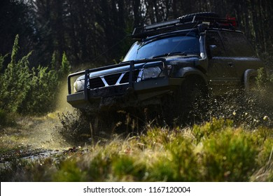 Extreme, challenge and 4x4 vehicle concept. Offroad race on nature background. Car racing in forest. SUV or offroad car on path covered with grass crossing puddle with water splash.
