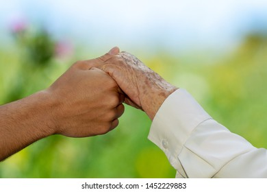 Extreme close up detail of young human hand holding senior hand against green outdoor blurred background.