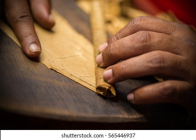 Extreme close ups of a craftsmen hands rolling and cutting tobacco leaves in real ambiance