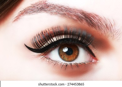 extreme closeup of brown beautiful womanish eye with glamorous makeup and falce eyelashes macro