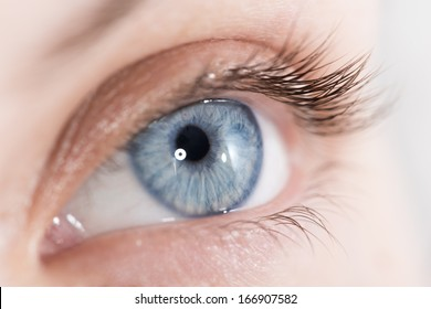 Extreme closeup shot of a beautiful woman eye