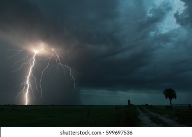 Extreme lightning storm over the Florida Everglades with vivid CG bolt within rain-core of storm.