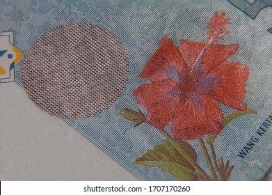Extreme macro photography of 50 Ringgit Malaysia. Ultra close up of RM 50, the Malaysian currency. The red hibiscus flower and the peak pixel security feature. Fifty Ringgit