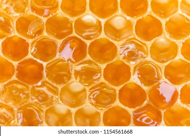 Extreme macro shot of a honey filled honeycomb