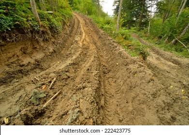 Extreme off road 4x4 muddy way through European forest. Poland.