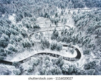 Extreme winter road trough a forest covered in snow