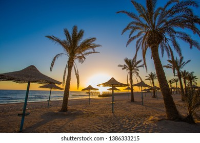 Extremely beautiful sunset on the luxurious beach against the background of the beauty of the sea with coral reefs. Beach with palm tree at the shore of Sea. Travel summer holiday background concept