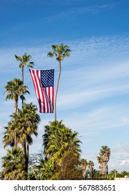 Extremely large american flag hanging and waving between two large palm trees