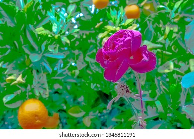 An extremely vibrant photograph displaying a red flower among bright oranges and an array of bright green leaves. An exaggeration of color almost lends towards a cartoonish image.