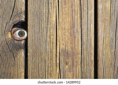 Eye behind wooden fence staring!