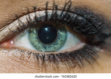 eye close-up makeup woman green eyes macro