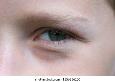 the eye of the cunning boy