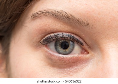 Eye of girl with make up