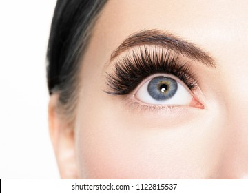 Eye lashes close up macro lashes extensions woman isolated on white