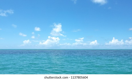Eye level view of a green sea with no waves and a blue sky with few clouds near the horizon and an feeling of empty and tranquility