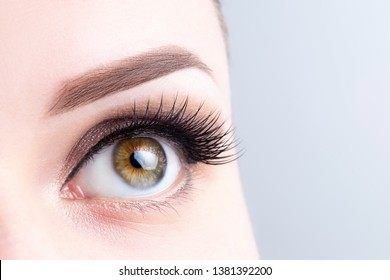 Eye with long eyelashes, beautiful makeup and light brown eyebrow close-up. Eyelash extensions, microblading, tattoo, permanent, cosmetology, ophthalmology concept.