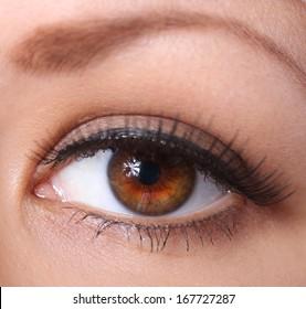Dark Brown Eyes Images Stock Photos Vectors Shutterstock