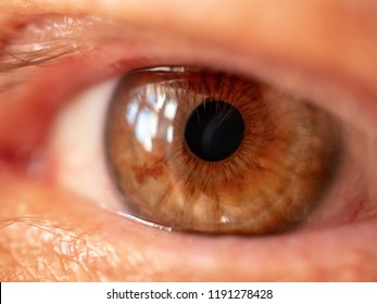 Eye macro detail, human eye close-up, macro shot, eyelashes, pupil. man 60 years old  senior