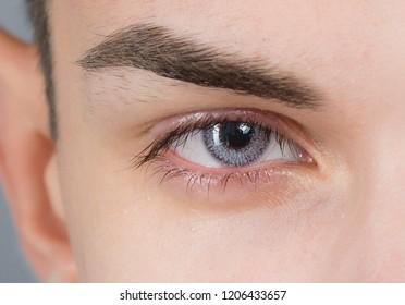 eye macro shot  with contact lens