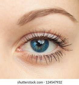 Eye macro. Woman eye. Macro image of human eye.