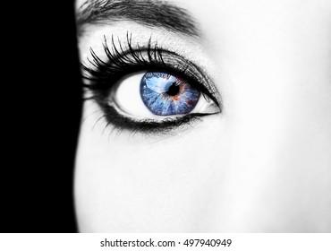Eye Makeup. Beautiful Eyes Glitter Make-up. Holiday Makeup detail.