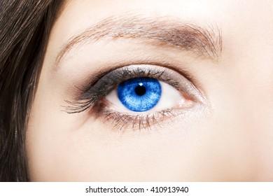 Eye Makeup. Beautiful Eyes Make up detail, eyelash extension