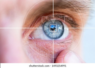 Eye monitoring virtual reality identification eyes.