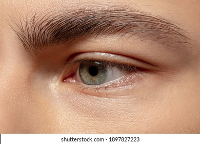 Eye sad. Close up face of young man on white studio background. Caucasian attractive male model. Concept of fashion and beauty, self-care, body and skin care. Handsome boy with well-kept skin.
