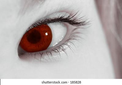 The eye of the vampire