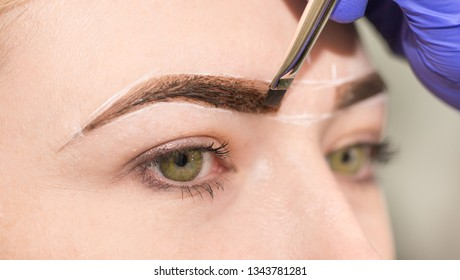 Eyebrows and eyes close-up. The master paints eyebrows with henna, paints with a brush in the salon of a beautician's make-up artist. Brow architecture.